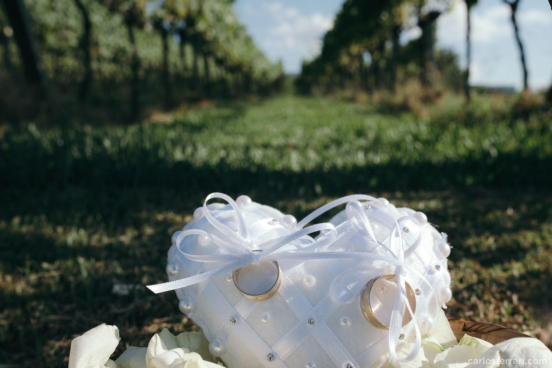 carlosferrari-fotografia-casamento-aliara-e-giba-vinicola-lovara-bento-goncalves-serragaucha-fotosdiferentes-espontaneas_32